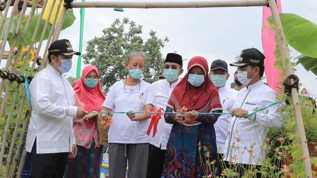 peresmian Ecofarm Kampung Baru dan Launching Asuransi Pohon Tumbang